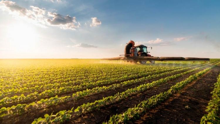 Dicas de Sustentabilidade Econômica para sua propriedade rural em 2019