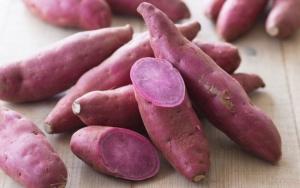 Projeto contempla demanda da cadeia produtiva e valida cultivares de batata-doce de polpa roxa