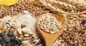 Área plantada com grãos em 2019 deve aumentar