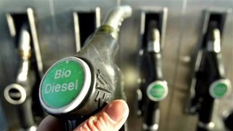 Mistura de 11% de biodiesel no diesel deve ficar para 2° semestre