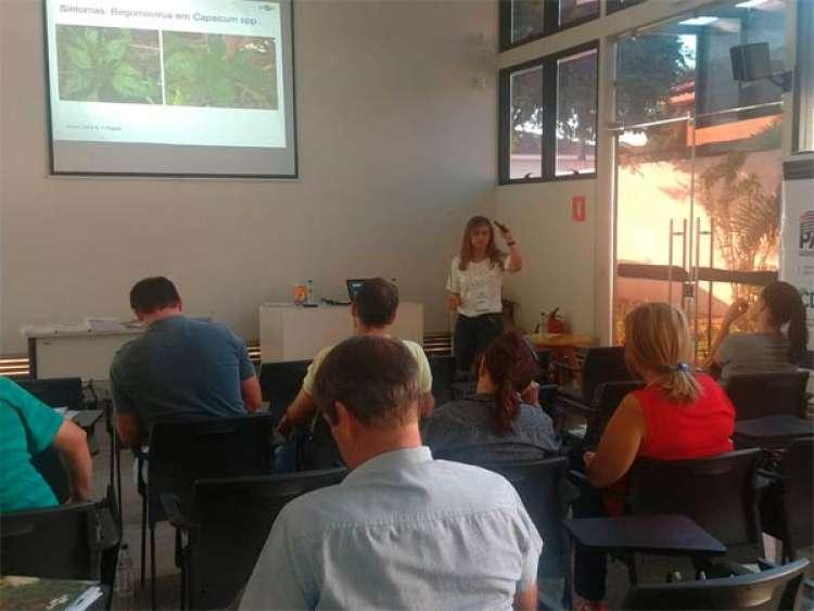 CREA de Itápolis realiza curso inédito sobre Produção Integrada de Pimentão