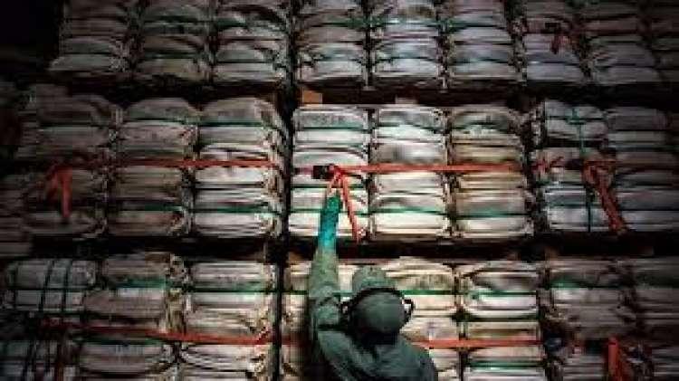 Produção de defensivos chineses diminui em 16%