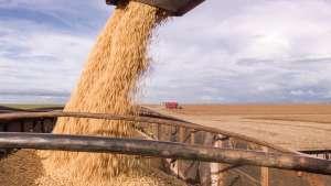 Indústria de soja vê possibilidade de agregar valor com acordo Mercosul-UE