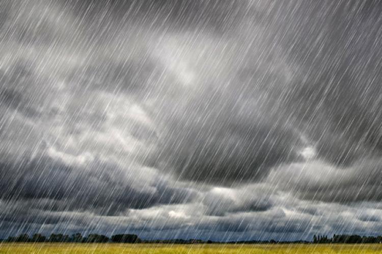Chuvas estancam perdas na soja no Brasil e favorecem safras de milho e algodão
