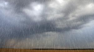 Outono com El Niño fraco afeta pouco culturas de inverno, diz secretaria do RS