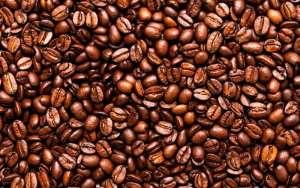 Sua produção de café é sustentável?