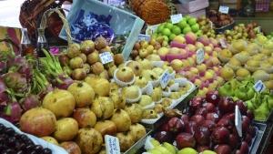 Acordos de equivalência melhoraram comércio mundial de orgânicos