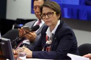 Novo Plano Safra será anunciado dia 12 de junho, sem cortes, diz ministra Teresa Cristina, da Agricultura