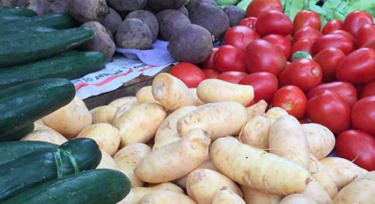 Problemas climáticos elevam preços de hortaliças
