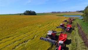 Nada está parado na agricultura brasileira, afirma professor da ESPM