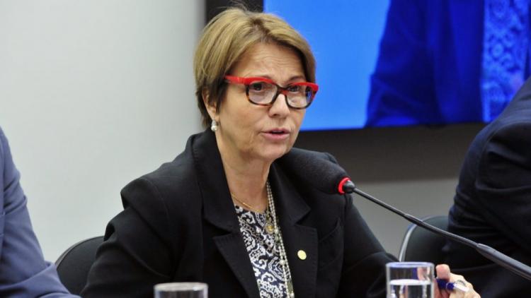 Tereza Cristina tentará destinar R$ 1 bilhão recursos ao seguro rural