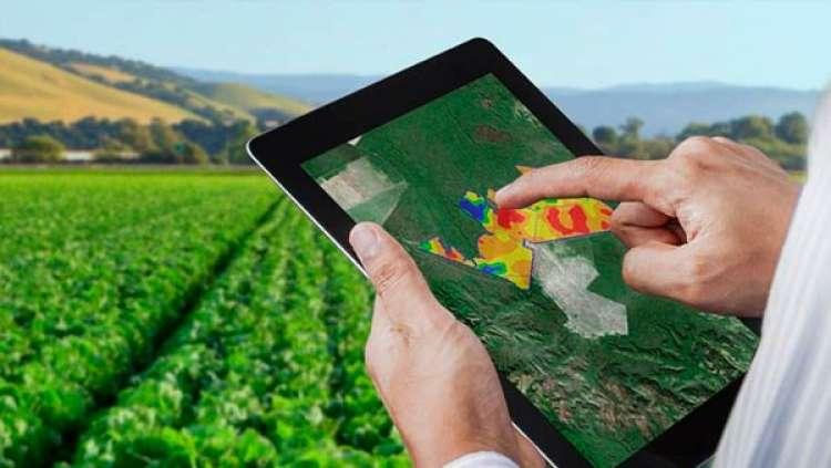 Digitalização, capacitação e redução de custos são desafios para os produtores, diz especialista