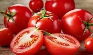 Menor oferta eleva o preço do tomate do rasteiro para a mesa em Irecê (BA)
