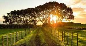 Entraves limitam expansão do mercado de terras no Brasil