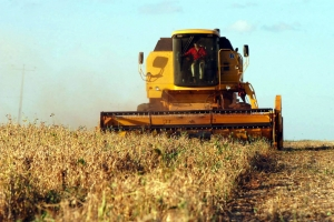 Contratação de crédito rural incluindo Pronaf até março soma R$ 129 bilhões