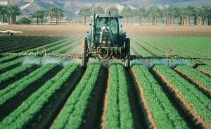 Governo quer permitir uso de dicamba em plantas resistentes