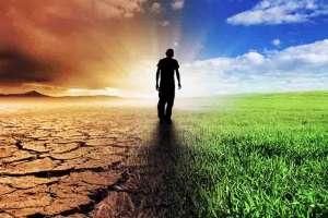 Mudança climática compromete viabilidade de frutas