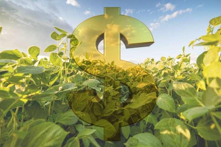 Pequenos produtores terão R$1 bilhão destinados à assistência técnica