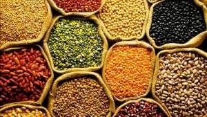 Cepea divulga tendências para o mercado Agro em 2020