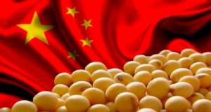 Coronavírus: demanda da China por soja e carne vai cair?