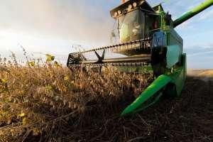 CEPEA: estudo mostra que exportações do agronegócio já são taxadas
