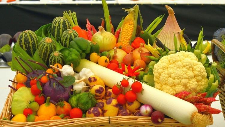 Estudo da CNA identifica perfil tecnológico de produtores de hortaliças e frutas