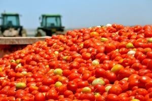 BNDES anuncia R$ 20,4 bi para investimentos agrícolas no ano safra 2018/2019