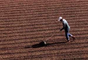 Agronegócio quer mudanças nas normas trabalhistas e governo promete revisão
