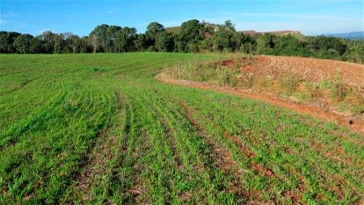 Prazo para ratificação de imóveis rurais em faixa de fronteira se encerra no dia 22 de outubro
