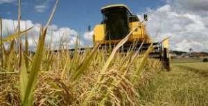 Governo quer que preço mínimo para produto agrícola pare de passar pelo CMN