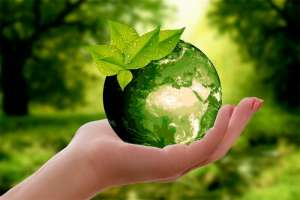 Aumento na eficiência de produção em fazendas leiteiras reduz impactos ambientais da atividade