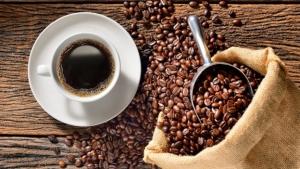 CNC apoia encontro de mulheres do café com OIC