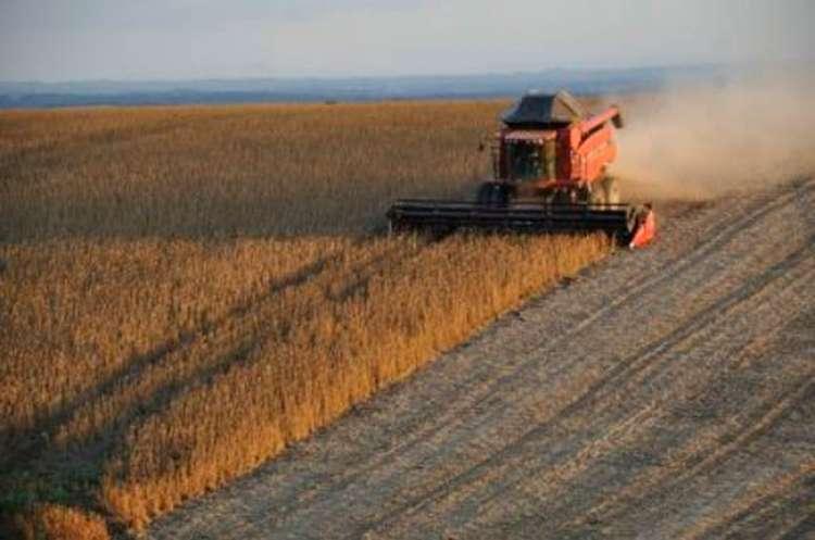 Teste encontra inconformidades em 31,9% dos fertilizantes em MT