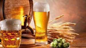 Total de cervejarias registradas no Brasil cresceu 36% em 2019 e chegou a mais de 1.200