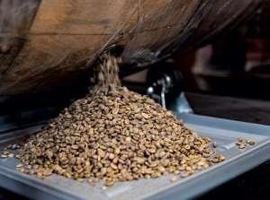 Café destilado: cafeteria inova e envelhece grão em barril de carvalho