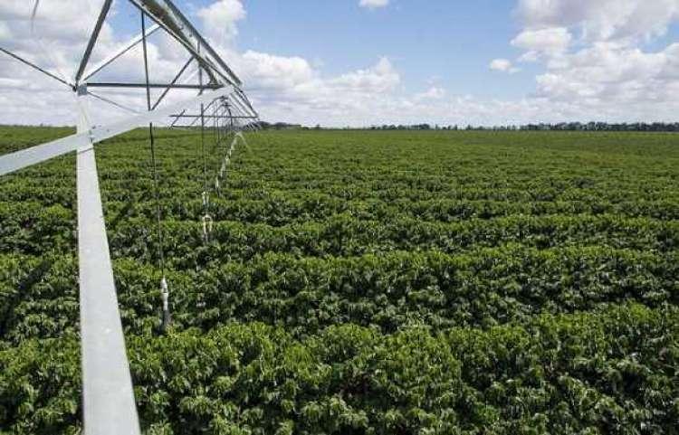 CNA debate propostas para fortalecer a irrigação