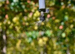 Subsídio para luz na irrigação esbarra no licenciamento
