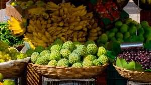 Goiás gera mais de 80 mil empregos com fruticultura