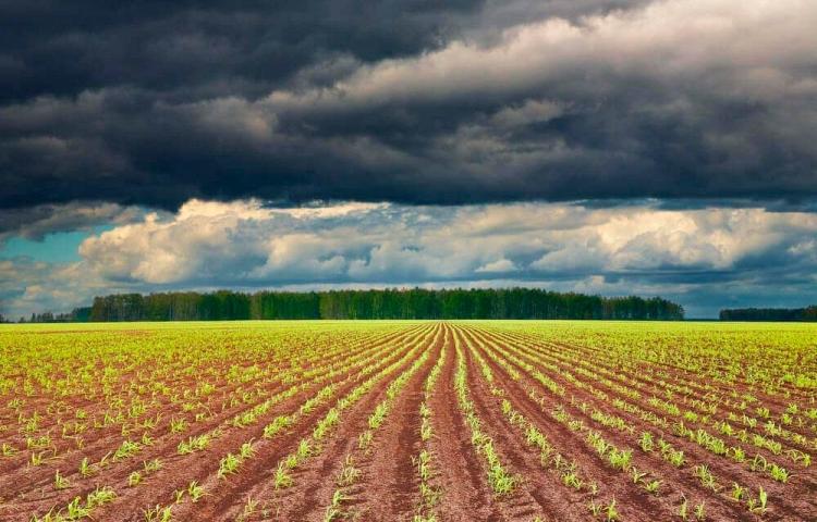 Verão no Brasil não terá influência do El Niño, prevê o climatologista LC Molion