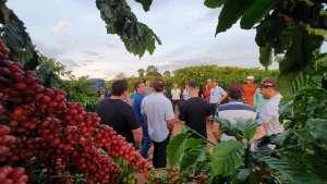 Representantes da indústria de café e exportadores fazem a rota da qualidade dos Robustas Amazônicos
