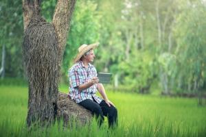 Conheça a startup de SC que dá consultoria virtual para agricultores