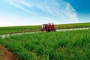 Novas especificações para defensivos agrícolas biológicos