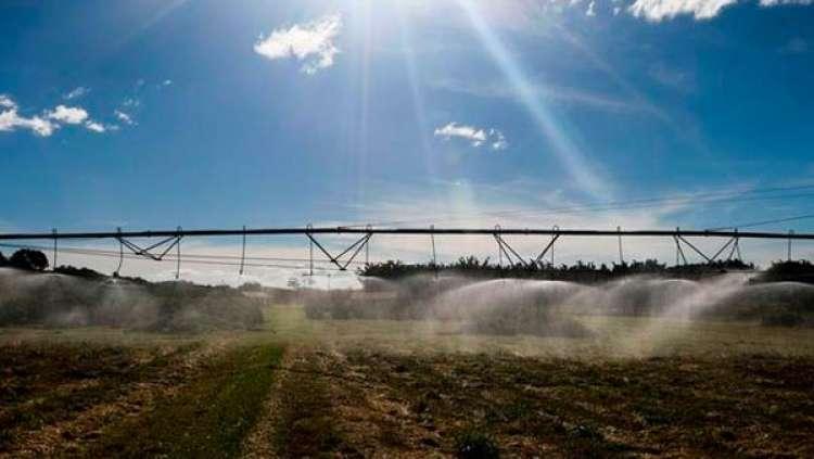 Valor da Produção Agropecuária atinge recorde de R$ 630,9 bilhões