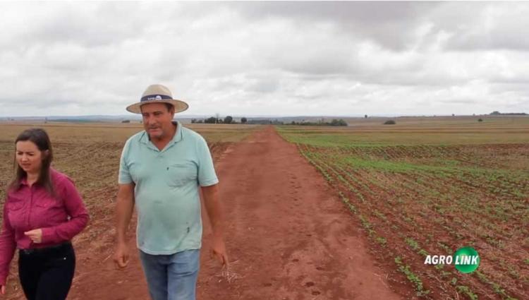 Biofertilizantes e aditivos biotecnológicos que contribuem com o aumento da produtividade agrícola