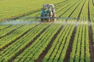 Rejeições de registros de pesticidas chega a 15%