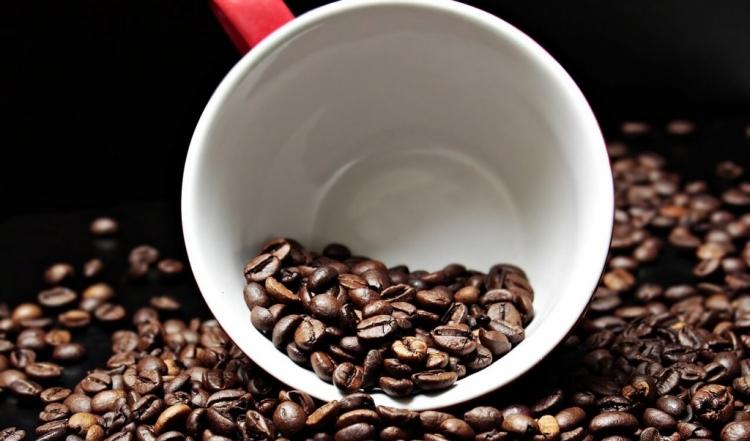 Conab envia senhas para acesso à pesquisa dos estoques privados de café