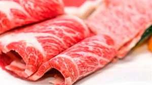 Exportação de carne bovina do Brasil acumula alta de 9,2% em 2019