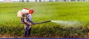 Como preservar a saúde e a segurança no trabalho rural?