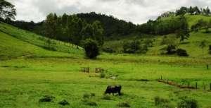 Você viu? Senado aprova projeto de registro de propriedades rurais em cartório