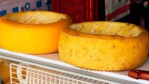 Qualificação vai ajudar a regularizar produção artesanal de queijos